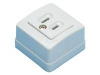 Domestic Blade Model Outlet - Exposed Outlet / 2-Prong, 2-Prong + Ground Model