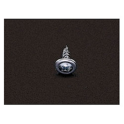 Iron Plate Screw with Washer (100 Pcs) EA949AA-2