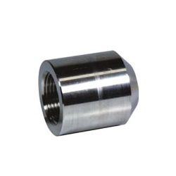 Screw-in Fitting for High Pressure PT BS/Boss Coupling