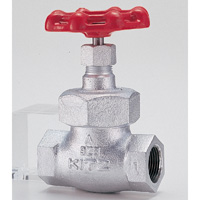 General Purpose Ductile Iron 16K Globe Valve Screw-in