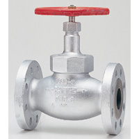 General Purpose Ductile Iron Class 300 Globe Valve Flange