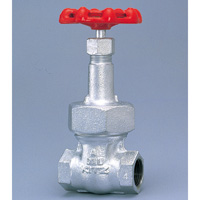 General Purpose Ductile Iron 16K Gate Valve Screw-in