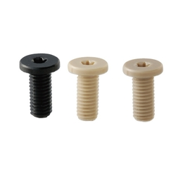Plastic Screws/Extra Low Head/PEEK/PPS/RENY