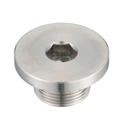 Hex Socket Screw Plug With Flange_SFM/SFMS