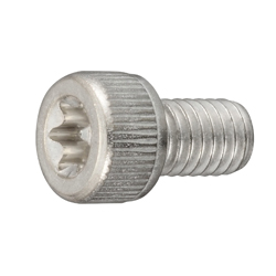 Screw with TORX Hole