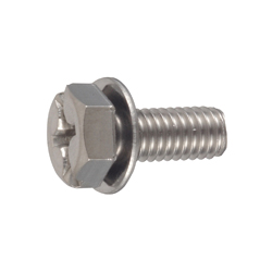 Phillips/Slotted Screw for Number Plates, Hex Trimmer P = 1 (JIS Flat W)