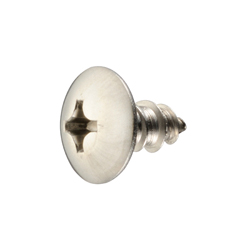 Cross Recessed Truss Tapping Screw, Type 1 A Shape