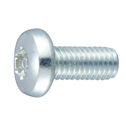TRX Tamper-proof Bind Machine Screw