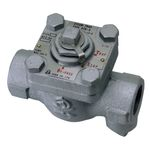 ATB-5 Type Steam Trap with Bypass (Triple Function)